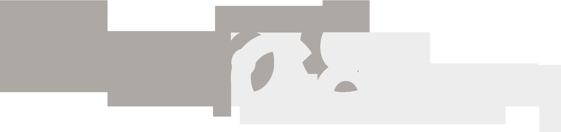 groupC-gallery-bgbot